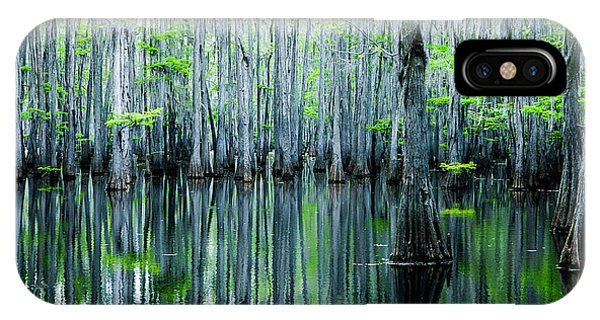 Swamp In Louisiana IPhone Case