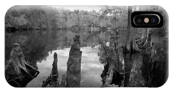 Swamp Stump II IPhone Case