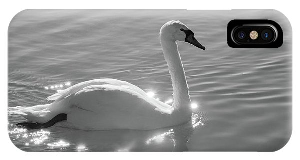 Swan Bathed In Light IPhone Case