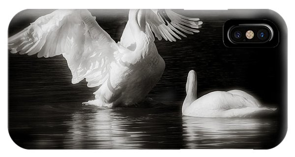 Swan Display IPhone Case