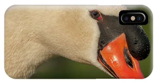 Swan Headshot IPhone Case