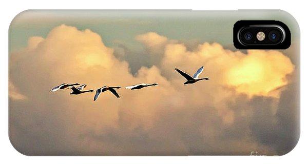 Swan Heaven IPhone Case