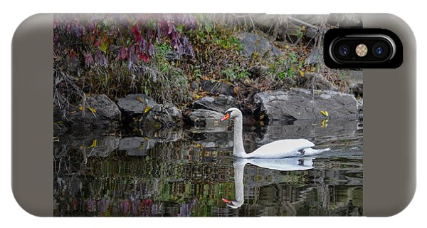 Swan In Autumn Reflections IPhone Case