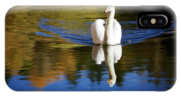 Swan In Color IPhone Case
