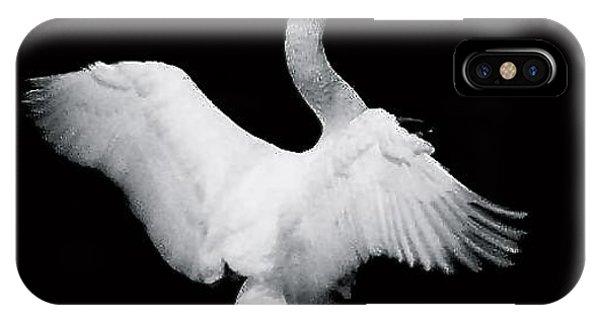 Swan In Flight Phone Case by Glenn Vidal