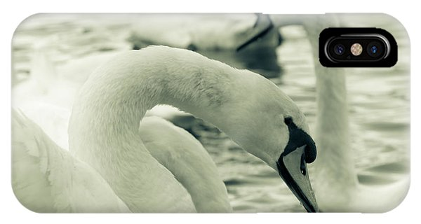 Swan In Water IPhone Case