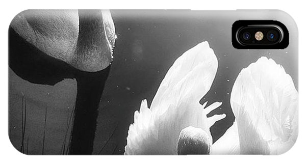 Landscapes iPhone Case - Swan Lake In Winter -  Kingsbury Nature by John Edwards