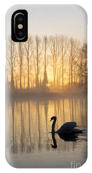Swan iPhone Case - Swan Lake by Tim Gainey