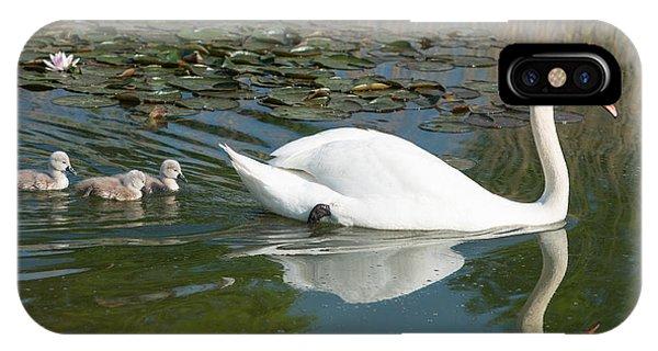 Swan Scenic IPhone Case