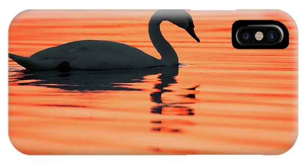 Swan iPhone Case - Swan Silhouette by Roeselien Raimond