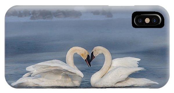 Swan Valentine - Blue IPhone Case