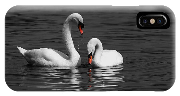 iPhone Case - Swans Swimming Isolation by Chris Day