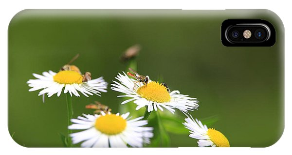 IPhone Case featuring the photograph Sweat Bee by Rick Morgan