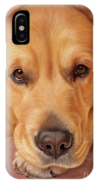 IPhone Case featuring the mixed media Sweet As Honey by Donna Mulley