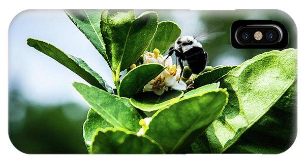 Sweet Bee IPhone Case