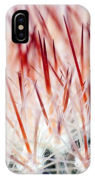 Sweet Gentle Pink Blooming Cacti IPhone Case