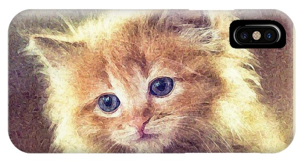 iPhone Case - Sweet Ginger Fuzz by Raven Hannah