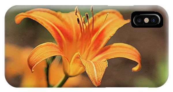 Sweet Lilly In Orange IPhone Case