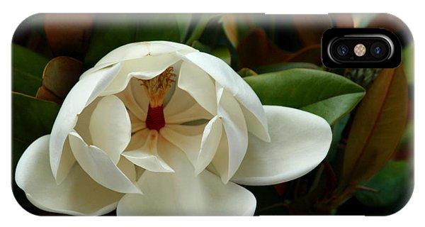 Sweet Magnolia IPhone Case