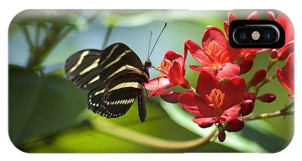 Sweet Nectar IPhone Case