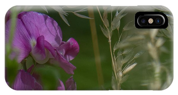 Sweet Pea 1 IPhone Case