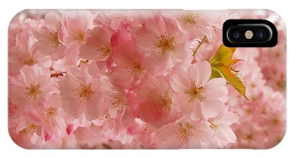 Sweet Pink- Holmdel Park IPhone Case