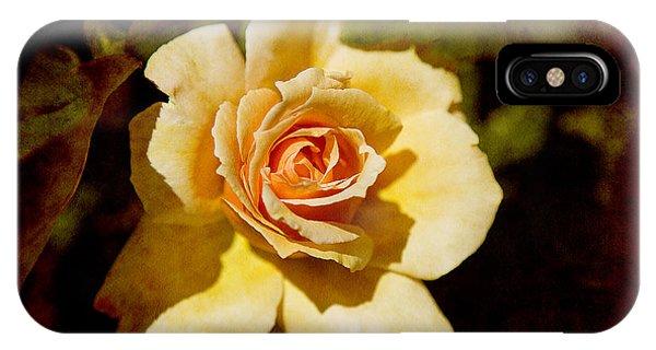 Sweet Rose IPhone Case