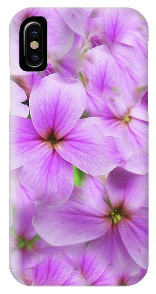 Sweet Spring Meadow Flox IPhone Case