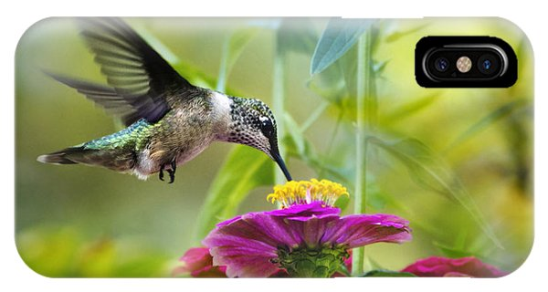 Humming Bird iPhone Case - Sweet Success by Christina Rollo