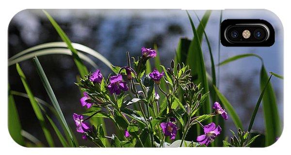 Sweet Violet IPhone Case