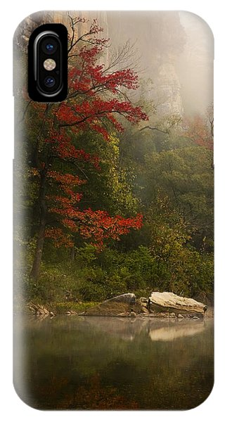 Sweetgum In The Mist At Steel Creek IPhone Case