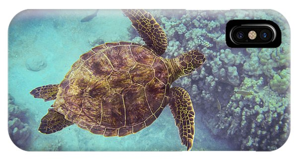Swimming Honu From Above IPhone Case