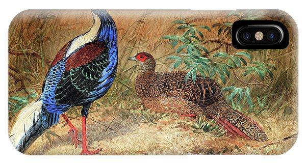 Swinhoe's Pheasant  IPhone Case