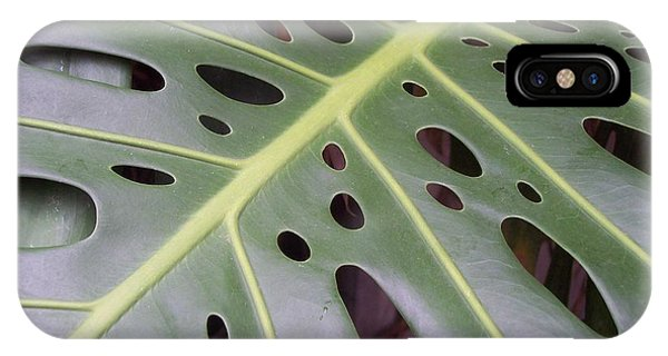Swiss Cheese Plant IPhone Case