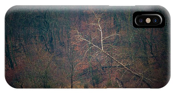 Sycamore Inclination IPhone Case