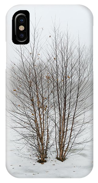 IPhone Case featuring the photograph Symmetrees by Mike Evangelist