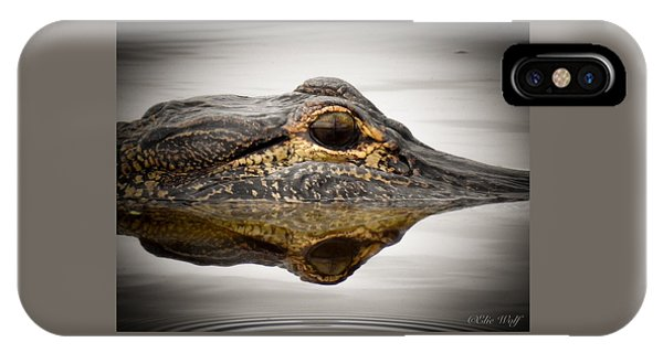 Symmetry And Reflection IPhone Case