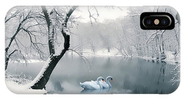 Swan iPhone Case - Synchronicity by Jessica Jenney