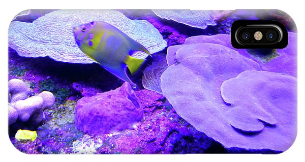 IPhone Case featuring the photograph Ta Purple Coral And Fish by Francesca Mackenney