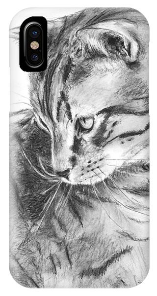 Tabby Cat In Profile Drawing IPhone Case