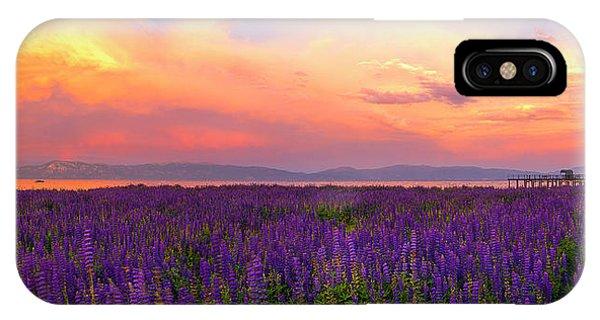 Tahoe City Lupine Sunset By Brad Scott IPhone Case