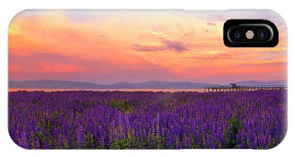 Tahoe City Lupine Sunset By Brad Scott IPhone Case