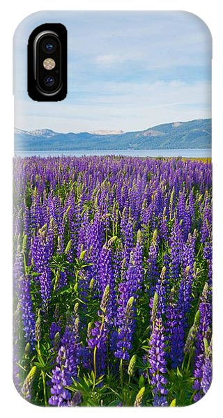 Tahoe In Summer IPhone Case