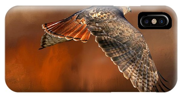 Red Tail Hawk iPhone Case - Tail Light On by Donna Kennedy