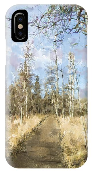Take A Walk IPhone Case