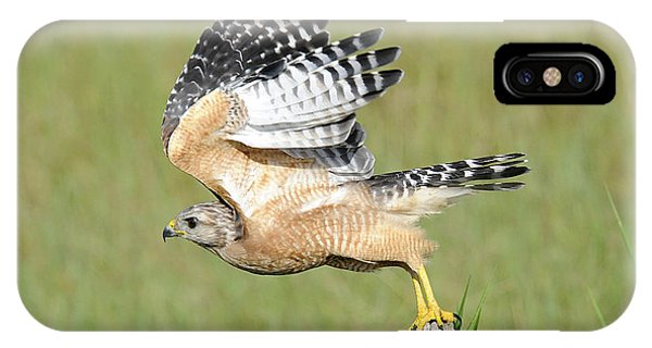 Taking Flight Phone Case by Keith Lovejoy