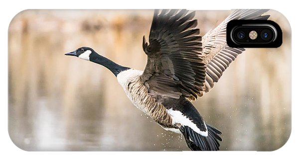 IPhone Case featuring the photograph Taking Flight by Steven Santamour