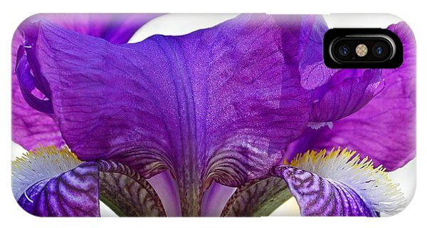 Tall, Bearded And Handsome - Iris IPhone Case