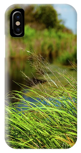 Tall Grass At Boat Dock IPhone Case