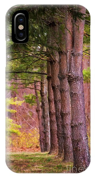 Tall Pines Standing Guard IPhone Case